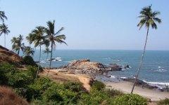 Индийский депутат призвал бороться с российскими туристами в Гоа