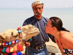 Российские туристы вновь предпочитают Египет