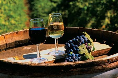 В Польше создан новый винный маршрут