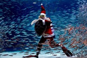 В Мексике появился подводный Санта-Клаус