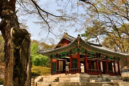 Все больше туристов приезжает в Южную Корею