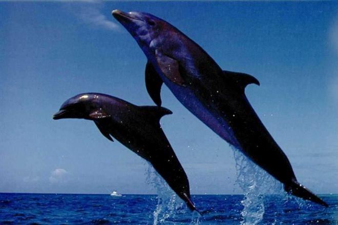 В Испании на берегу Бискайского залива откроют смотровую площадку