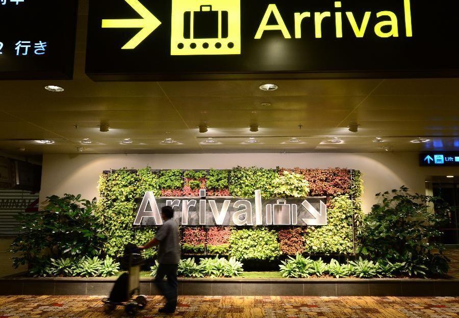 Аэропорт Сингапура превратили в роскошный сад
