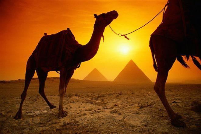 Украинцы все реже ездят в Египет