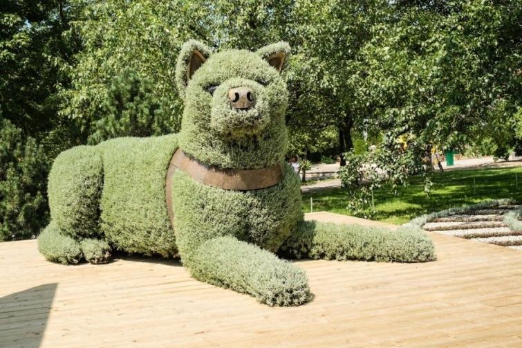 Канада выставила на показ скульптуры из растений