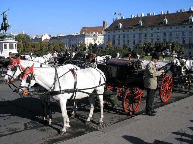 Туристы предпочитают путешествовать на фиакрах по Вене
