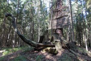 Туристический маршрут «Тропа сказок» возродят в Поозерье