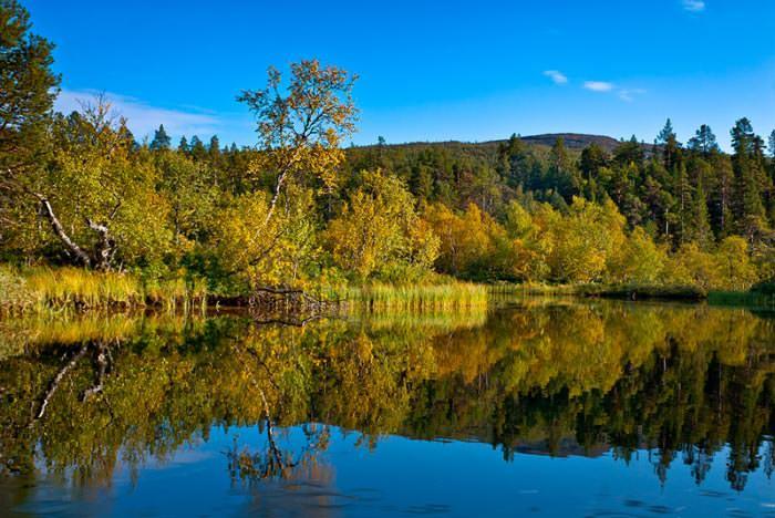 Финляндия собирается открыть новый национальный парк