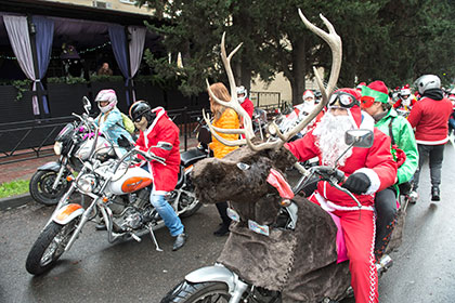 Сочи стал самым популярным направлением новогоднего отдыха среди российских туристов, путешествующих самостоятельно
