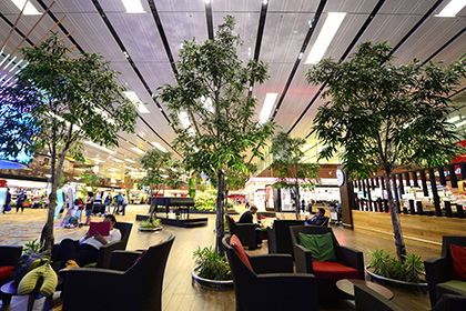 Опубликован рейтинг лучших аэропортов для сна