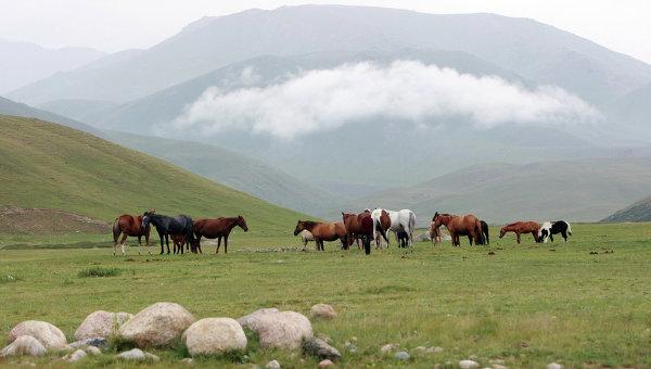 Британское издание включило высокогорную Киргизию в топ-10 стран, которых ожидает туристический бум в ближайшие годы