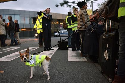 Авиарейсы в Европе задержали на миллион минут из-за забастовок