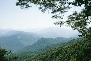 На Северном Кавказе к 2030 году планируют втрое увеличить число туристов
