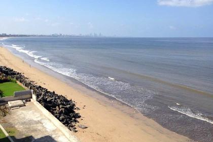 На очистку «мусорного пляжа» в Индии ушло 85 недель