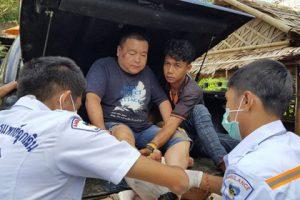 Семья туристов в Таиланде пострадала из-за испугавшихся собаки слонов