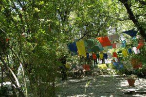 Индийский Тибет. Центр Norbulingka