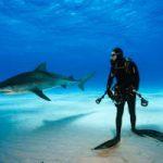 Пляж в Таиланде закрыт из-за нападения акулы