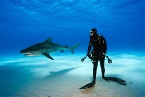 Балеарские острова удвоили ставку туристического налога
