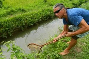 Туристам во Вьетнаме предложили отдохнуть нестандартно