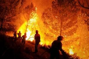 В Испании и Португалии не удается потушить лесные пожары