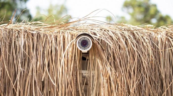 Египет устанавливает камеры наблюдения для защиты туристов