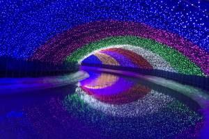 Дубай пригласил гостей на большой гастрономический фестиваль
