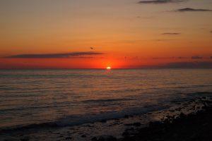Парки и пляжи Сочи оборудуют бесплатным Wi-Fi