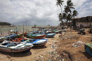 Власти Шри-Ланки ввели бесплатные визы для туристов из России