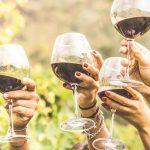 TUI приглашает на винный фестиваль на Кипре!