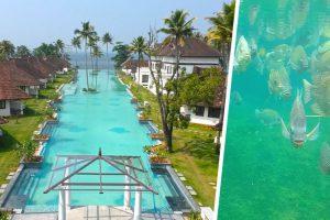 Индийский курорт: 5-звездочный отель в Керале сделал в бассейне рыбную ферму, чтобы выжить