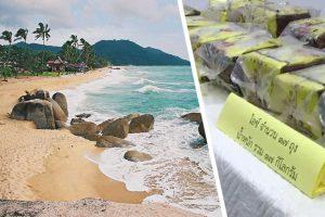 Пляж туристического острова Самуи в Таиланде завалило наркотиками