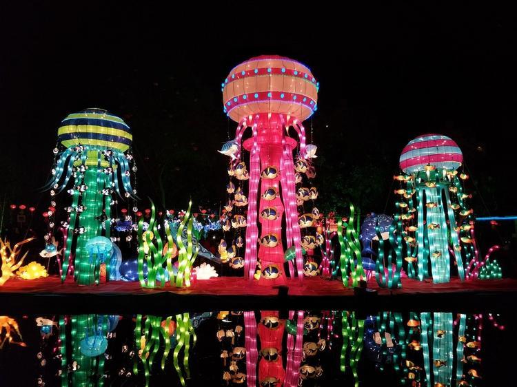 Как изменится празднование Китайского Нового года в этом году?