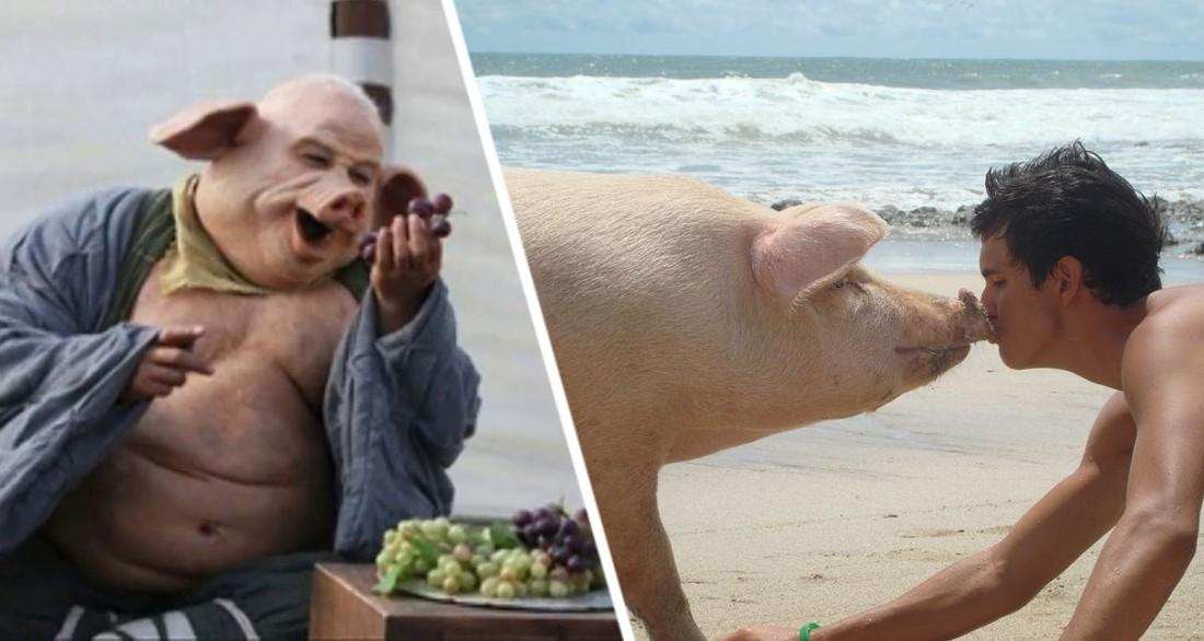 Туристов назвали свиньями: на популярном курорте оказались в шоке от новых гостей